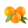 پرتقال جنوب، هر واحد یک کیلوگرم