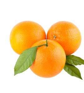 پرتقال جنوب تره یار